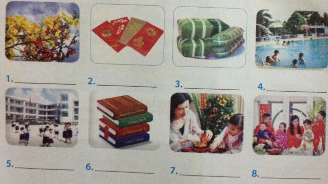 Giải bài tập Tiếng Anh lớp 6 mới Unit 6: Our Tet holiday